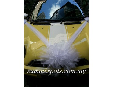 Wedding Car 030a