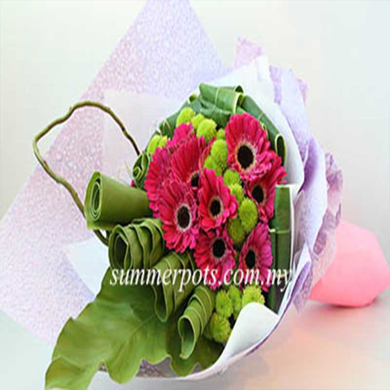 Gerbera Bouquet 213