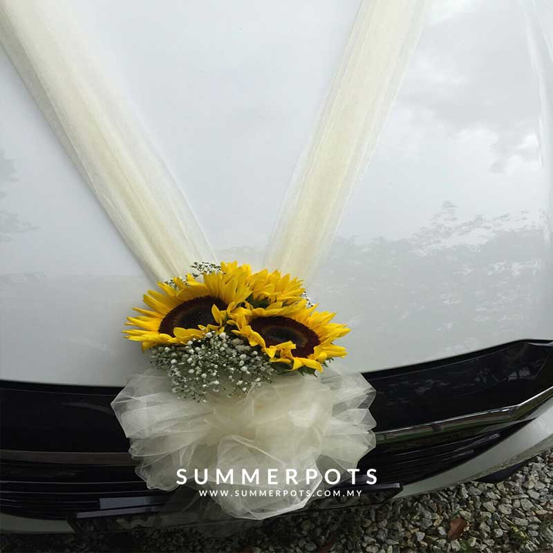 Wedding Car 033