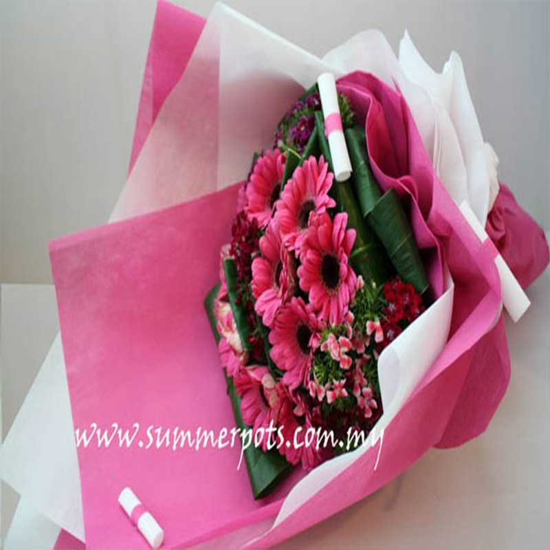 Gerbera Bouquet 206