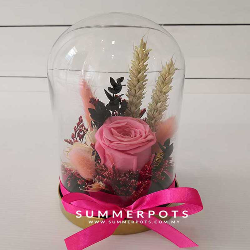 Preserved Flowers 51