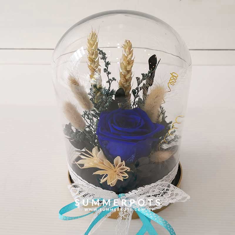 Preserved Flowers 52