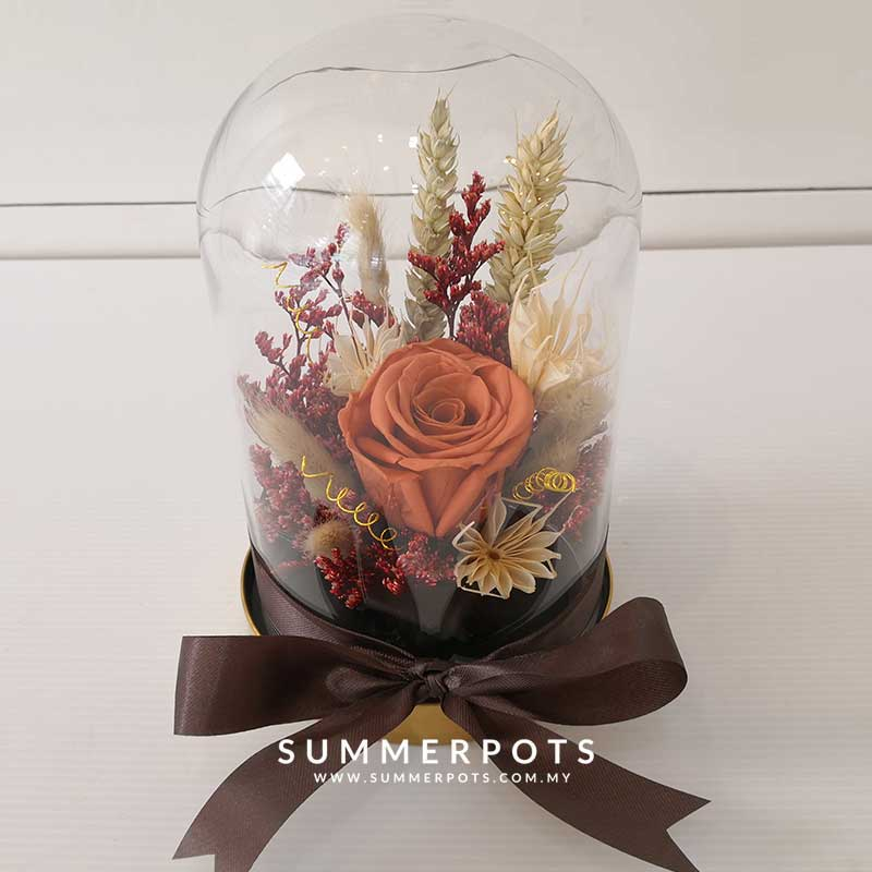 Preserved Flowers 53