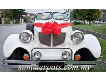 Wedding Car 004a