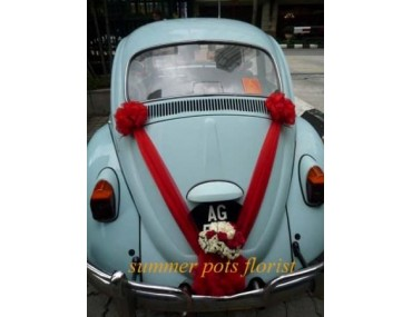 Wedding Car 006a