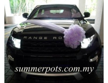 Wedding Car 007a