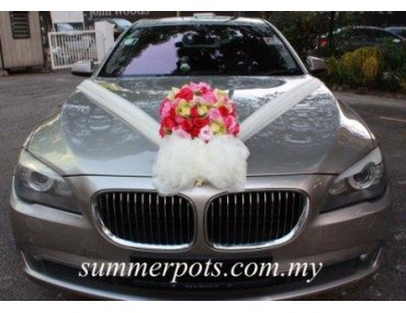 Wedding Car 009a