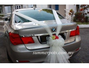 Wedding Car 009b