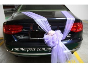 Wedding Car 010b