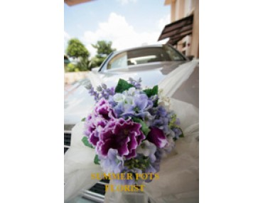 Wedding Car 012a