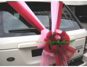 Wedding Car 016b