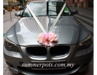 Wedding Car 025a