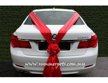 Wedding Car 026b