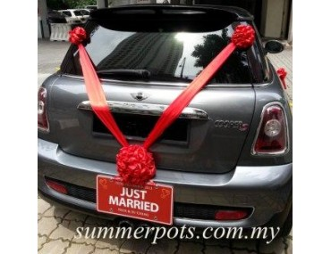 Wedding Car 028b