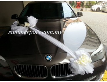 Wedding Car 029a